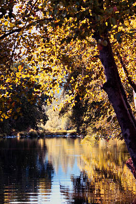 Autumn On The Applegate Poster by Melanie Lankford Photography