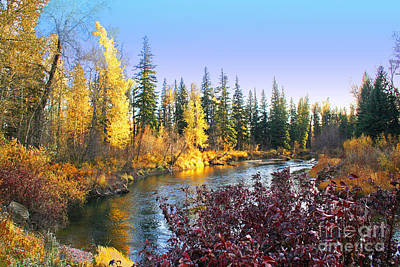 Autumn On The Blackfoot River Poster by H J Levy