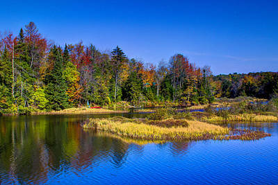 Autumn On The Moose River Poster