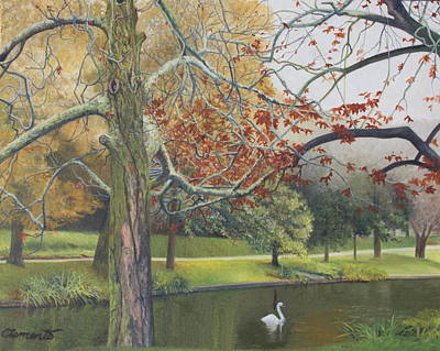 Autumn On Town Pond Poster