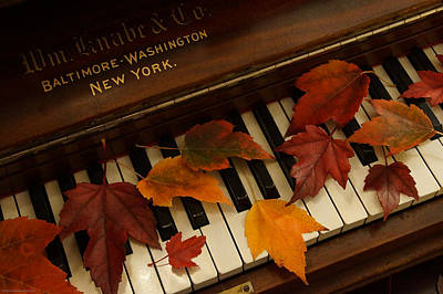 Autumn Piano 14 Poster by Mick Anderson