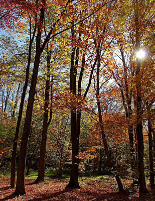 Poster featuring the photograph Autumn Picnic by Debbie Oppermann