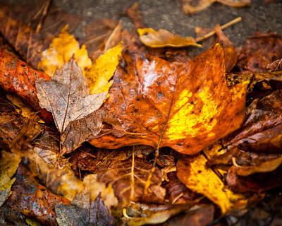 Autumn Pile Poster