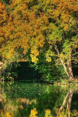 Autumn Pond Poster by Ester  Rogers
