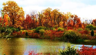 Poster featuring the pyrography Autumn Pond by P Dwain Morris
