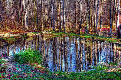 Autumn Pond Reflections Poster