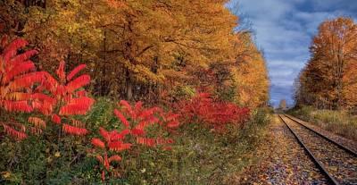 Autumn Railroad Poster by Henry Kowalski