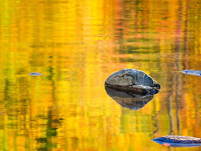 Autumn Reflected Poster by Joan Herwig