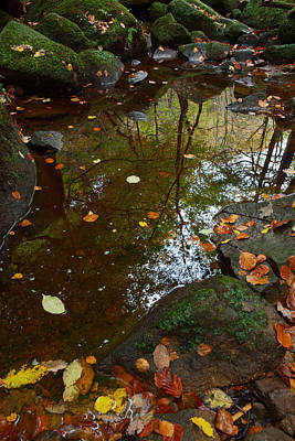Autumn Reflections Padley Gorge Poster