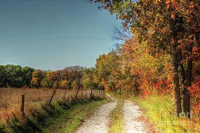 Autumn Ridge Poster by Thomas Danilovich