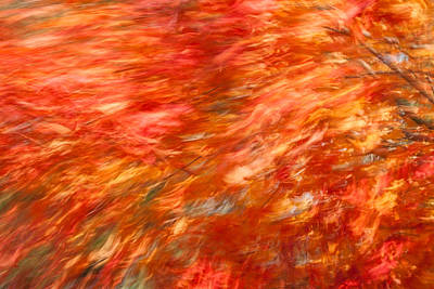 Poster featuring the photograph Autumn River Of Flame by Jeff Folger