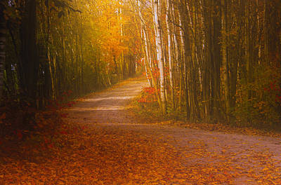 Poster featuring the photograph Autumn Roadway by Jim Vance