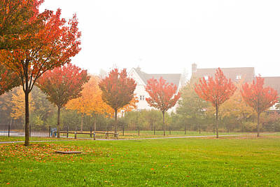 Autumn Scene Poster