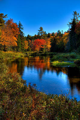 Autumn Splendor On The Moose River Poster by David Patterson