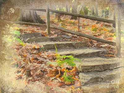 Autumn Stairs Poster by Dan Carmichael