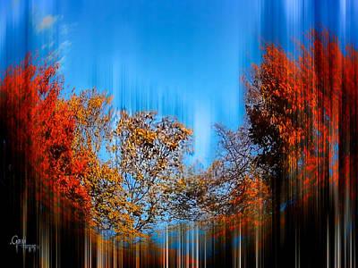 Autumn Streak Poster