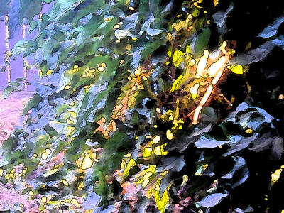 Autumn Sun On Leaves Poster