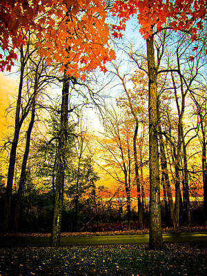 Poster featuring the photograph Autumn Sunset  by Sara Frank