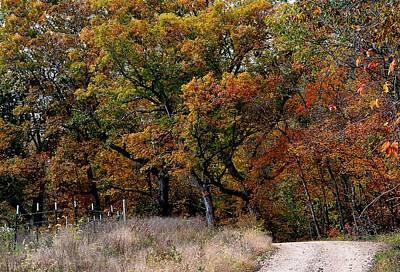 Autumn Trail 2 Poster