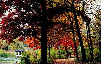 Autumn Trail Poster by Rosanne Jordan