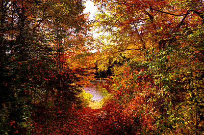 Autumn Trail To The Moose River Poster
