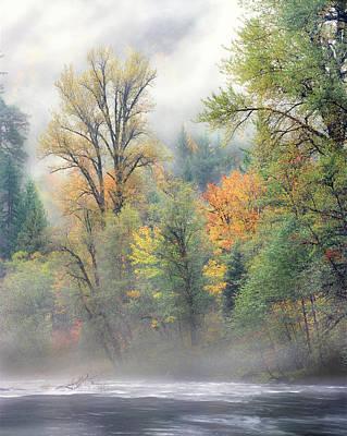 Autumn Trees Along Mackenzie River Poster