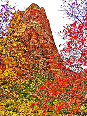 Autumn View Along Zion Canyon Scenic Drive In Zion National Park-utah Poster