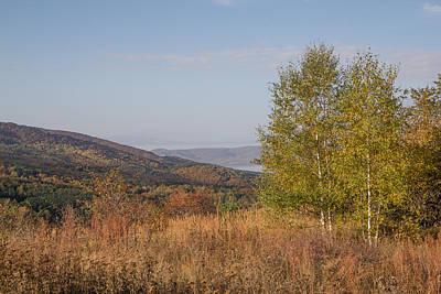 Poster featuring the pyrography Autumn Vitosha Mountain Bulgaria by Jivko Nakev