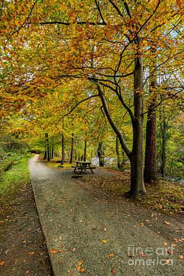 Autumn Walk Poster by Adrian Evans