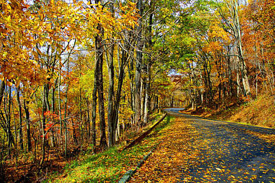 Autumn Winding Road Poster by Kevin Cable