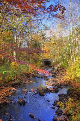 Autumn Woods Poster by Joann Vitali