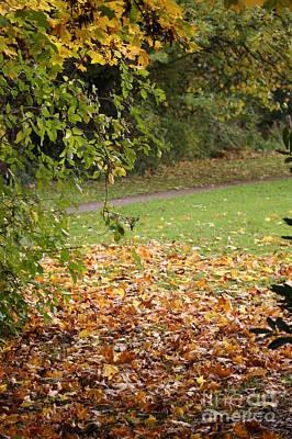 Autumnal 1 Poster by Carol Lynch