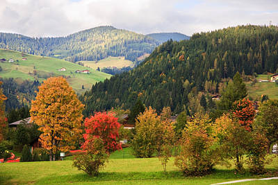 Autumnal Colours In Austria Poster