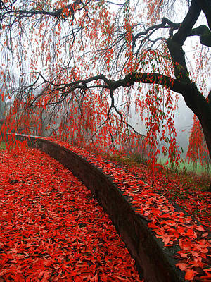 Poster featuring the digital art Autumnal Red by Bruce Rolff