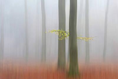 Autumnmorning Poster by Huib Limberg