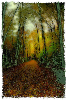 Autumns Back Roads Poster by David Patterson