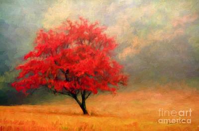 Autumns Colors Poster
