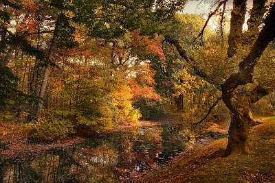 Poster featuring the photograph Autumn's Edge by Jessica Jenney