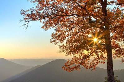 Autumn's Light Poster by Debra and Dave Vanderlaan