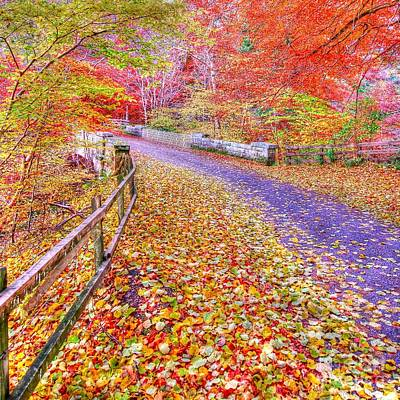 Autumns Way Rouge Poster by John Kelly