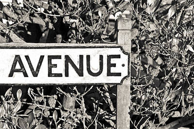 Avenue Sign Poster