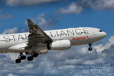 Avianca Star Alliance Airbus A-330 Poster by Rene Triay Photography