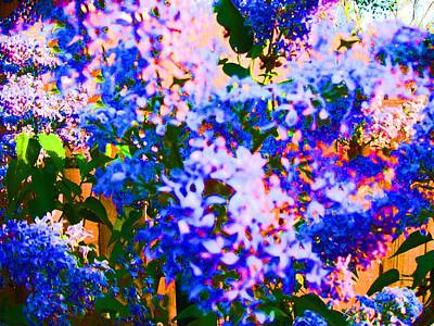 Azaleas Abstract Cloud Difference Poster
