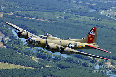 B-17 Flying Fortress Flying Poster by Phil Wallick