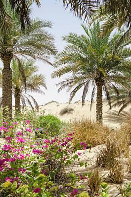 Bab Al Shams Desert Resort And Spa Poster