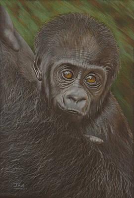 Baby Gorilla - Little Djemba Poster