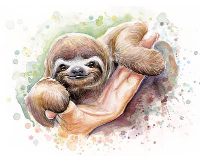 Baby Sloth Watercolor Poster by Olga Shvartsur