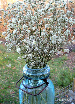 Poster featuring the photograph Baby's Breath Bouquet by Sandra Estes