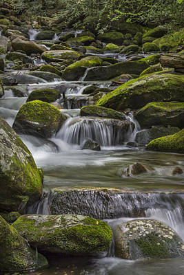 Back Country Stream Poster by Jon Glaser