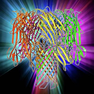 Bacterial Alpha-hemolysin Toxin Poster by Laguna Design